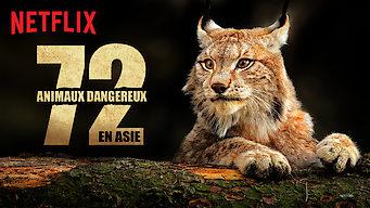 72animaux dangereux en Asie (2018)