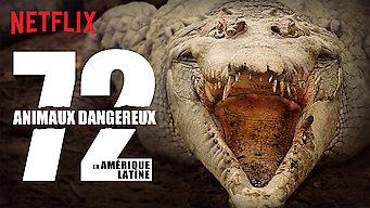 72 animaux dangereux en Amérique latine (2017)