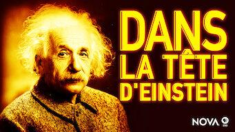 Nova : Dans la tête d'Einstein (2015)