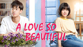 A Love So Beautiful (2017)